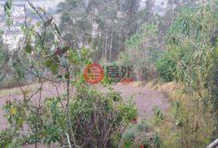 厄瓜多尔因巴布拉省Otavalo的房产,Rural,编号27934366