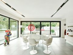 居外网在售卢森堡3卧1卫的房产