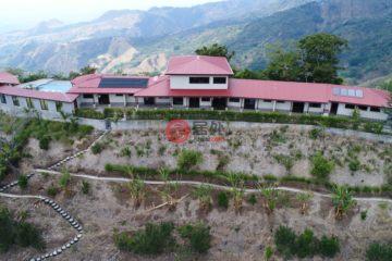 居外网在售哥斯达黎加8卧8卫特别设计建筑的房产总占地10117平方米USD 1,199,000