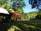 瓦努阿图谢法维拉港的房产,n/a,编号49525756