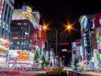 日本TokyoShinjuku的房产,东京新宿区新建一户建带车库,编号52614323