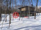 日本北海道尼斯科奇哦的房产,111-34,编号48180361