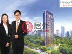 新加坡中星加坡新加坡的公寓,31 Tomlinson Road,编号59871883
