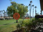 美国加州棕榈沙漠的房产,76672 CHRYSANTHEMUM WAY,编号50057892