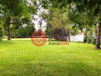 美国宾夕法尼亚州Royersford的独栋别墅,LOT 3 FRUIT FARM,编号59954548