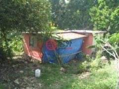 居外网在售牙买加Hopewell2卧的房产USD 19,135