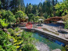 居外网在售加拿大Langley4卧6卫的房产总占地4897平方米CAD 5,000,000